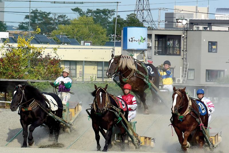 banei-courses-chevaux-hokkaido-zoomjapon78