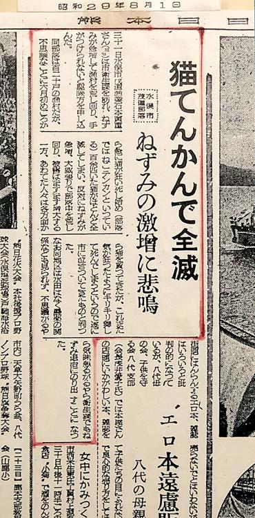 article-kumamoto-minamata-zoomjapon88