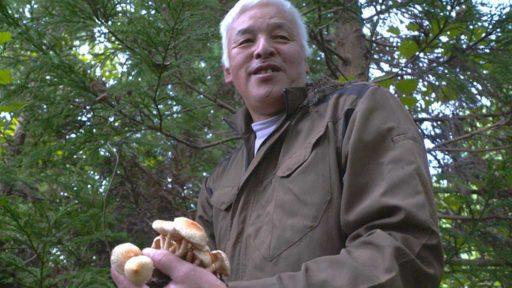 NHK WORDL-JAPAN, Fukushima Monologue Matsumura Naoto 2021