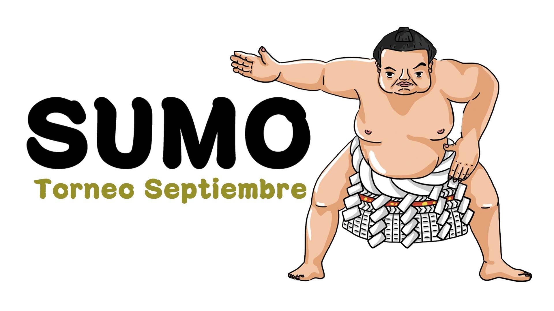 sumo-yokozuna-yohann-postics-zoomES
